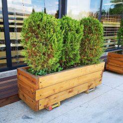 ხის (ლარიქსის) მასიური საყვავილე 500x430x1500 – 1 ცალი